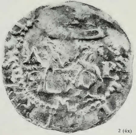 ANS Digital Library: Coinage of El Perú